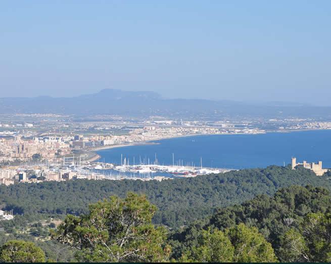 Airport transfers Palma Majorca